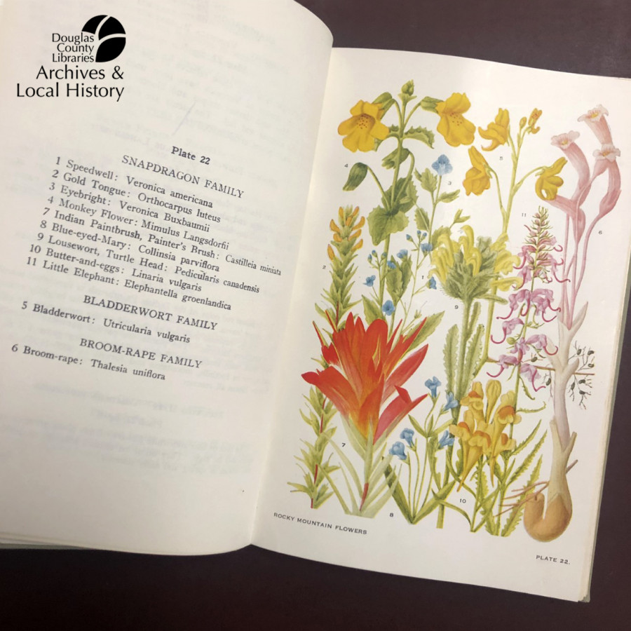 Image shows the cover and a plate illustration for Flowers of Mountain and Plain. A second image shows plate 25 from the book, with colorful floral illustrations. The book won the Archives Award for Best Cover Illustration.