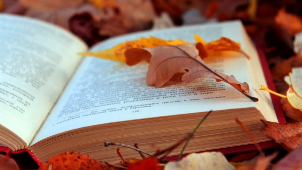autumn-leaves-and-book